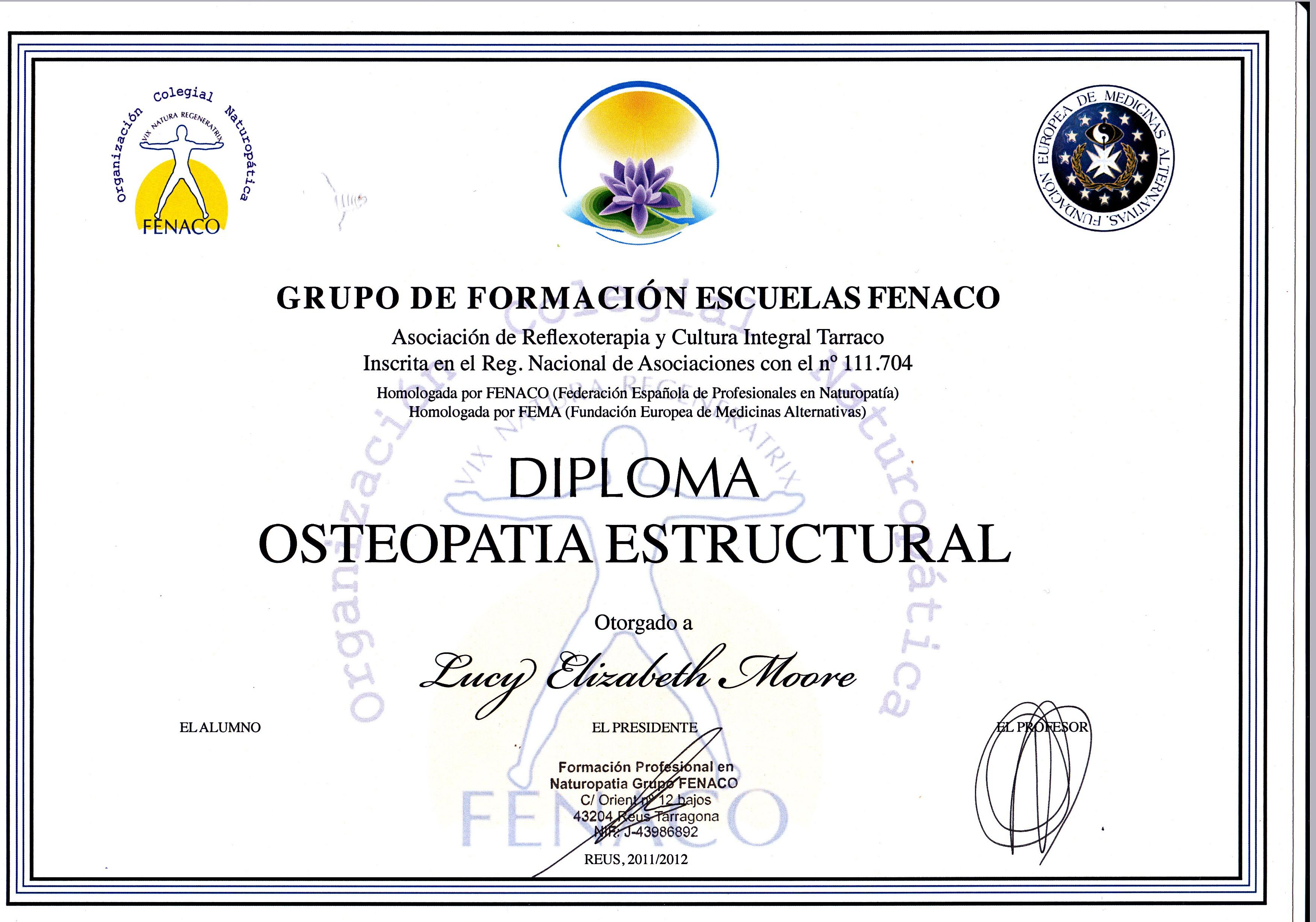 Curriculum | Loosen Up - Servicios de naturopatia, osteopatia ...
